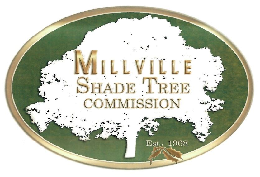 Millville Shade Tree Logo